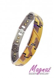 Magnaz Stainless Steel Silver, Yellow Gold Bracelet